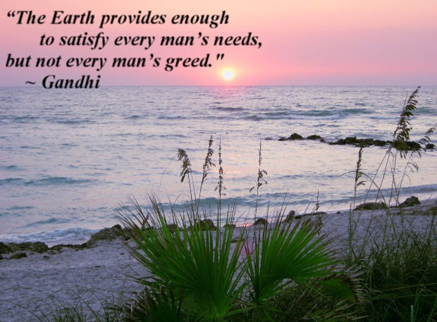 The Earth provides enough