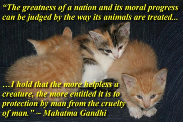 the greatness of a nation