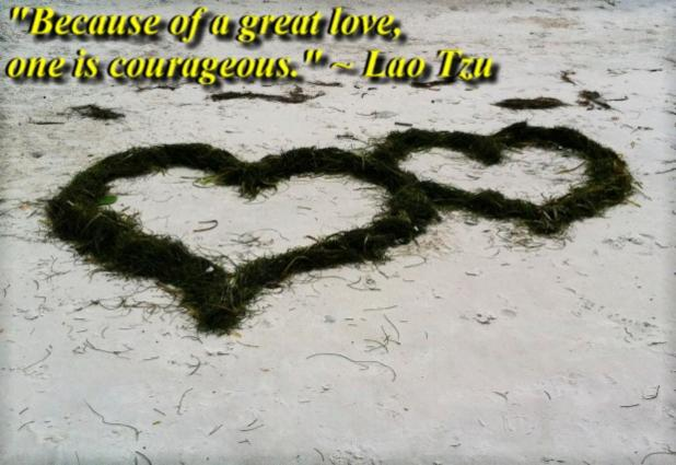 """""""Because of a great love, one is courageous."""" ~ Lao Tzu"""