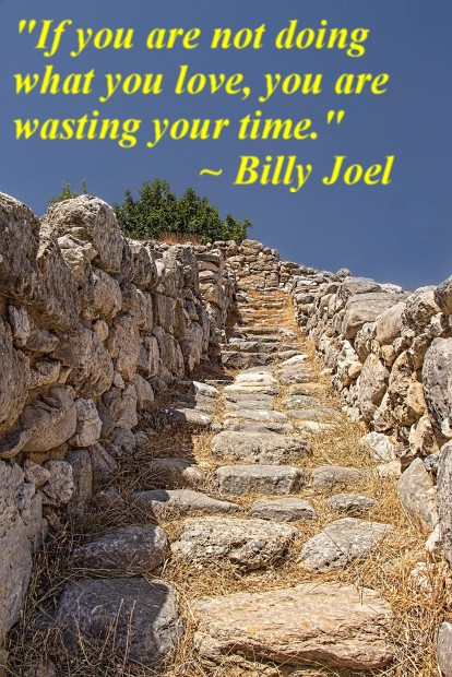 """""""If you are not doing what you love, you are wasting your time."""" ~ Billy Joel"""
