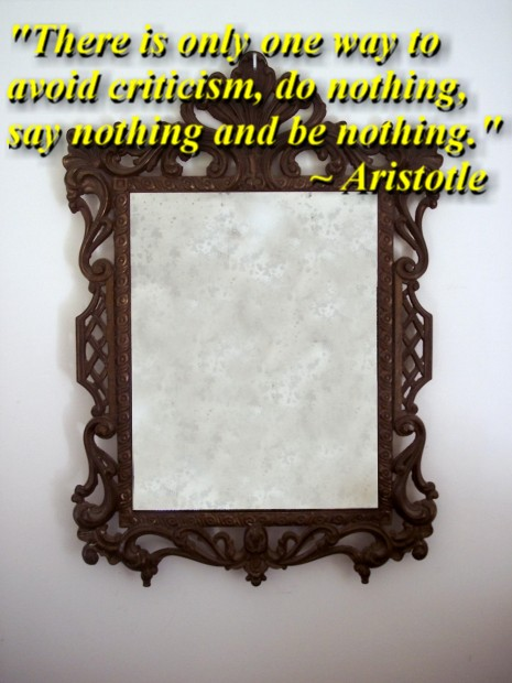 """""""There is only one way to avoid criticism, do nothing, say nothing and be nothing."""" ~ Aristotle"""