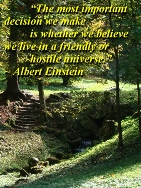 """""""The most important decision we make is whether we believe we live in a friendly or hostile universe."""" ~ Albert Einstein"""