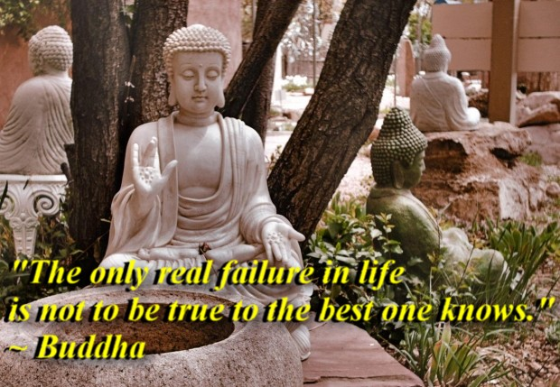 """""""The only real failure in life is not to be true to the best one knows."""" ~ Buddha"""