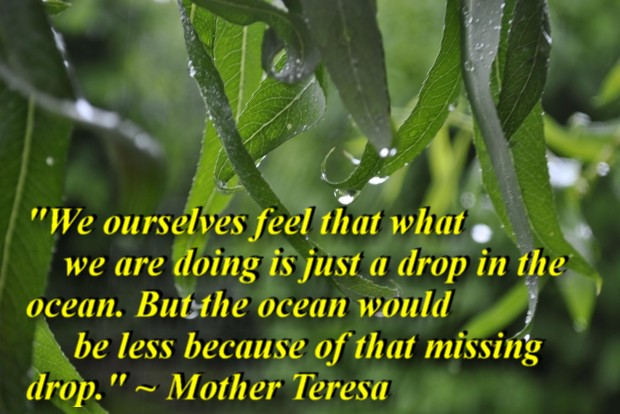 """""""We ourselves feel that what we are doing is just a drop in the ocean. But the ocean would be less because of that missing drop."""" ~ Mother Teresa"""