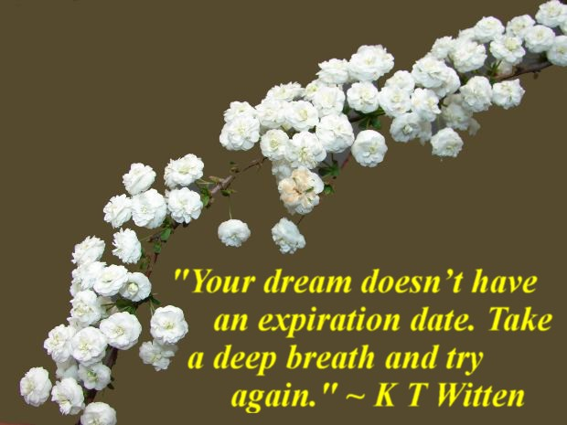 """""""Your dream doesn't have an expiration date. Take a deep breath and try again."""" ~ K T Witten"""