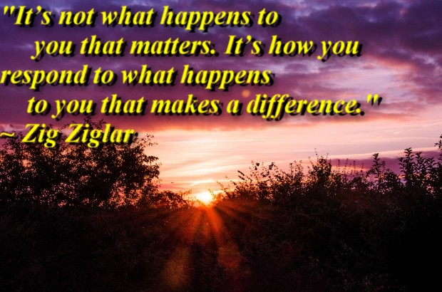 """""""It's not what happens to you that matters. It's how you respond to what happens to you that makes a difference."""" ~ Zig Ziglar"""