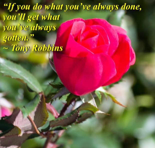 """""""If you do what you've always done, you'll get what you've always gotten."""" ~ Tony Robbins"""