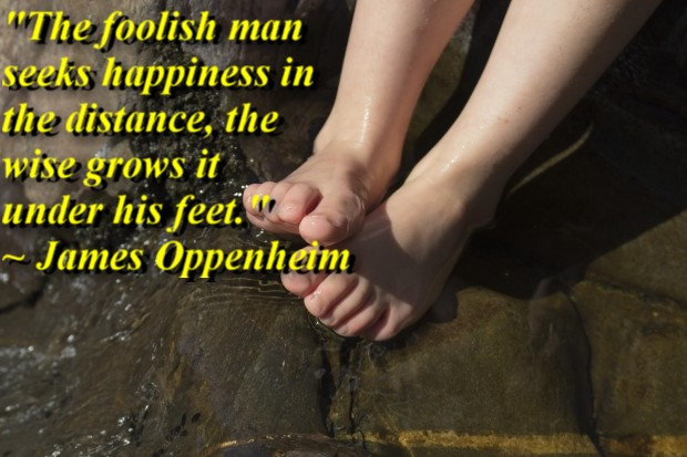 """""""The foolish man seeks happiness in the distance, the wise grows it under his feet."""" ~ James Oppenheim"""