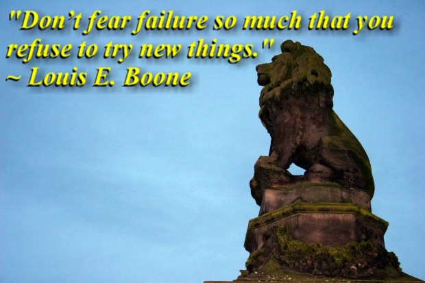 """""""Don't fear failure so much that you refuse to try new things."""" ~ Louis E. Boone"""