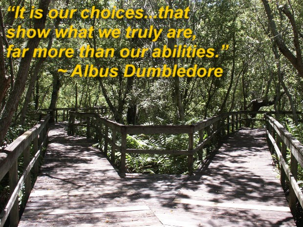 """""""It is our choices...that show what we truly are, far more than our abilities."""" ~ Albus Dumbledore"""
